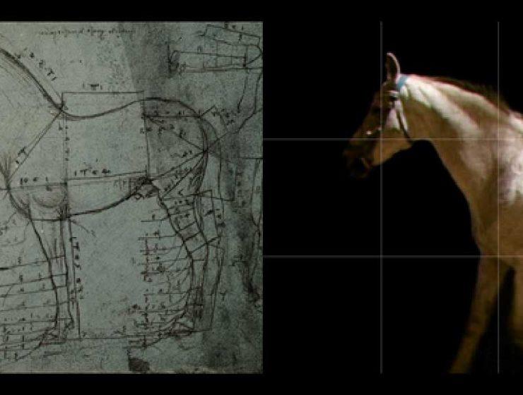 Leonardo da Vinci, a Milano la mostra interattiva dedicatagli