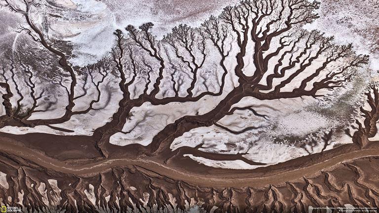 People's Choice 'Nature' / Colorado River by Stas Bartnikas
