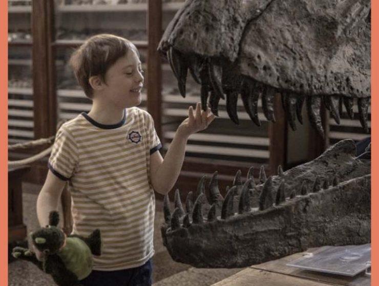 Il best seller Mio fratello rincorre i dinosauri di Mazzario diventa un film
