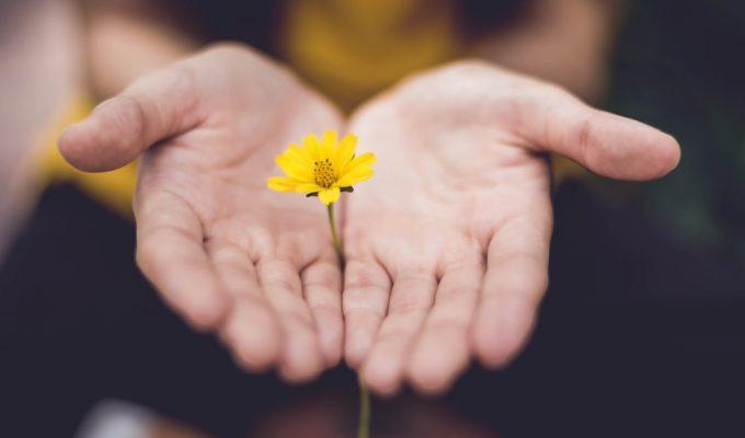 L'importanza di educare i ragazzi alla cultura del dono