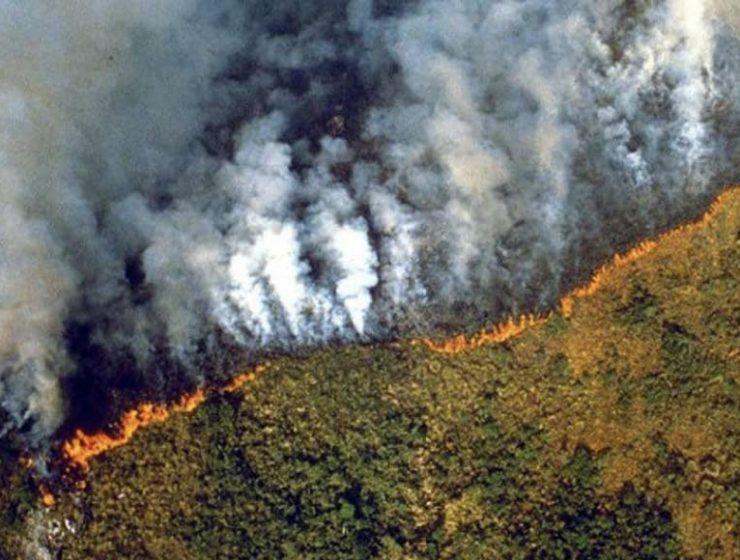 La Foresta amazzonica è in fiamme ( e nessuno ne parla)