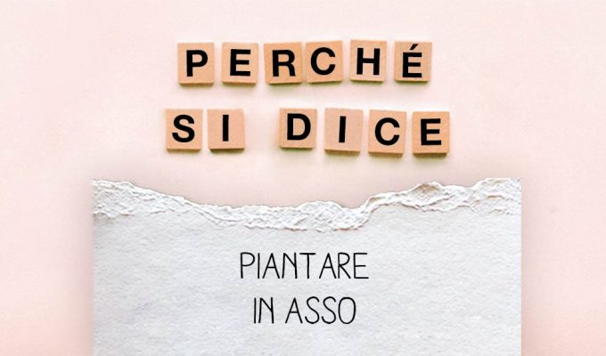 perche-si-dice-piantare-in-asso
