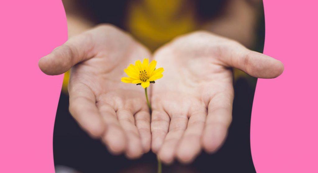 ci-vuole-un-fiore