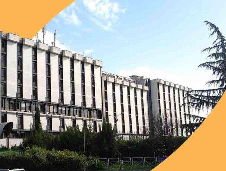 rank-universita