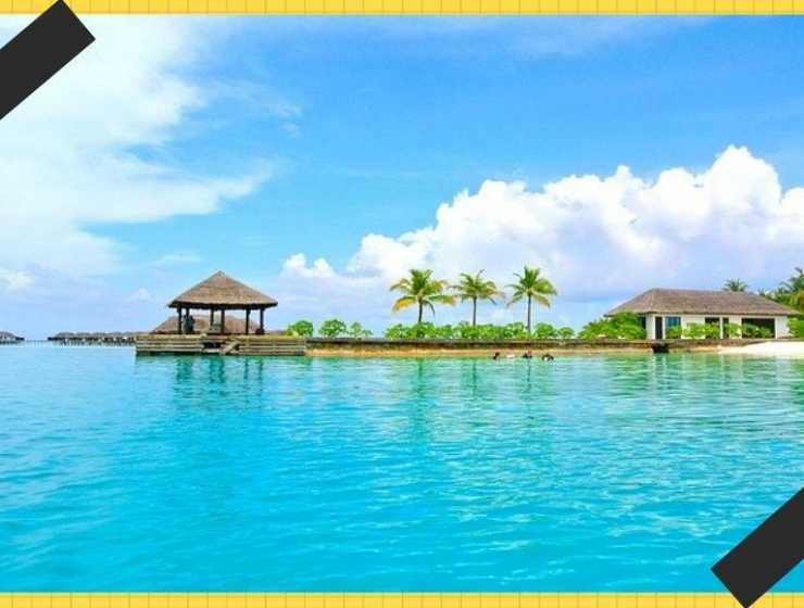 """Cercasi un libraio """"a piedi nudi"""" per gestire una libreria alle Maldive"""
