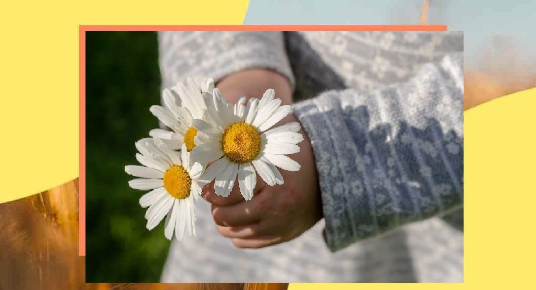 Perché è importante educare alla gentilezza fin da piccoli