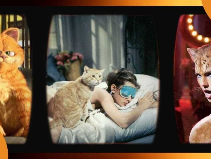 I 5 film più famosi con protagonisti i gatti