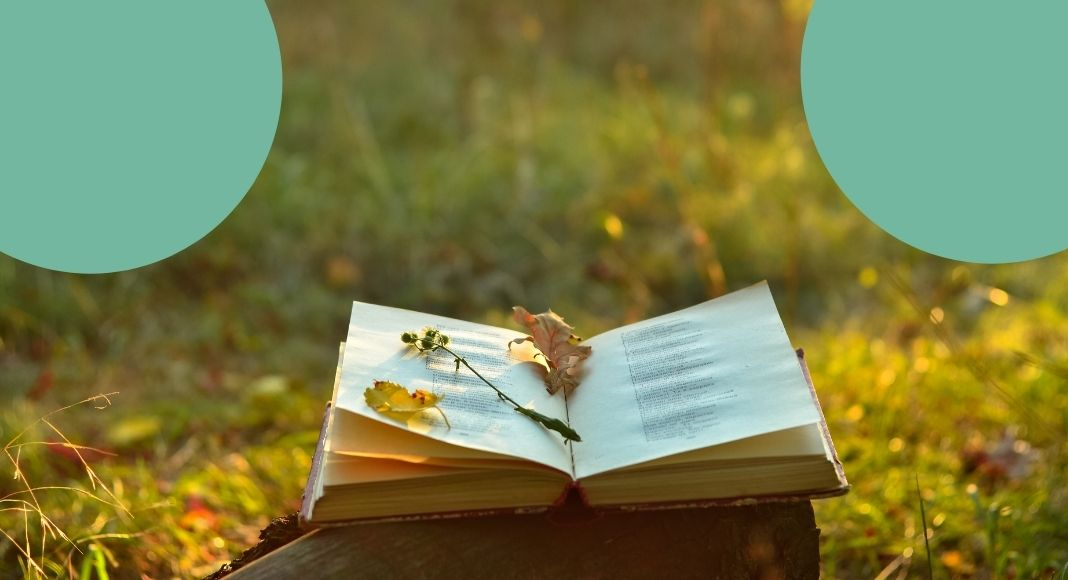 La breve poesia di Rupi Kapur sull'insicurezza in amore