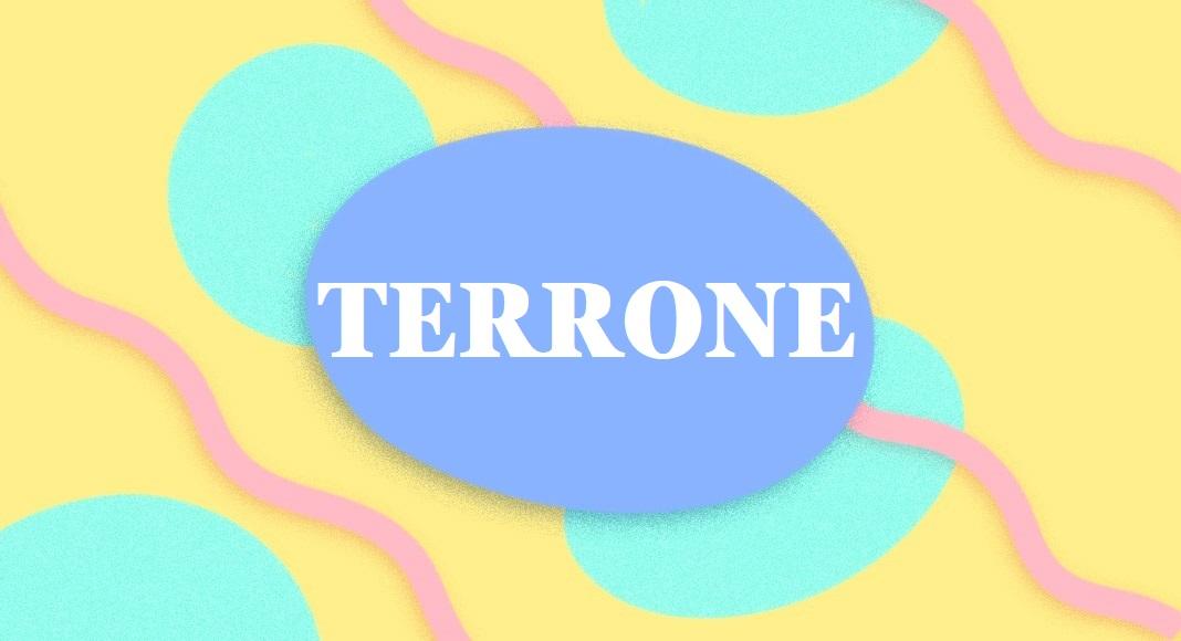 """""""Cambiamo l'eccezione negativa della parola Terrone"""", appello alla Crusca"""