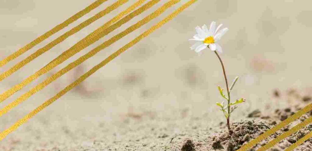 E la vita cammina quasi dritta, una poesia sulla resilienza