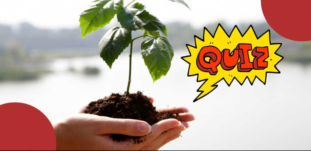 Quanto conosci l'ambiente? Scoprilo con questo test