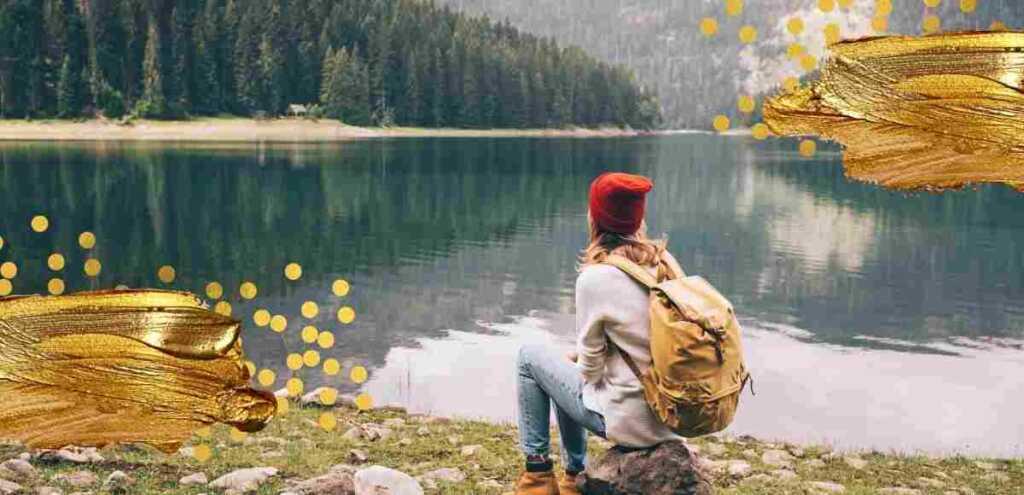 """""""Natura è ciò che vediamo"""", la poesia di Emily Dickinson sull'ambiente"""