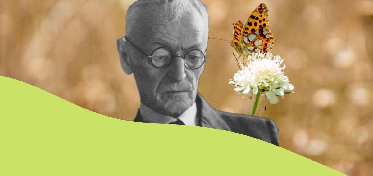 """""""Tiepide sere estive"""", la stagione più bella secondo Hermann Hesse"""