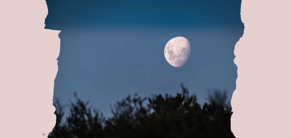 tramonto-della-luna-poesia-leopardi-1201-568